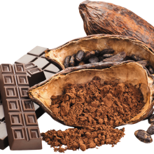 What do we know about Cacao?